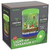 Light-Up Terrarium Kit for Kids - STEM Activities Science Craft Kits - Kids Crafts Gifts for Kids -...