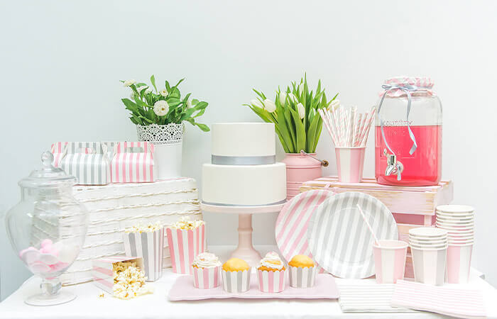 Themed Disposable Plates and Cups