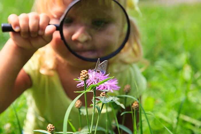 Little Girl Exploring Nature